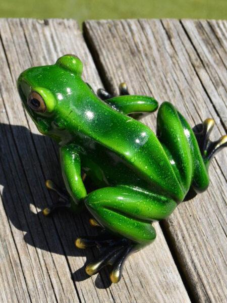 groda grön